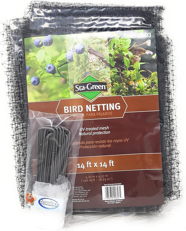 STAGreen Tesadorz STAGreen Predective Bird Netting 14'x14' with Tesadorz 6  Landscape Staples