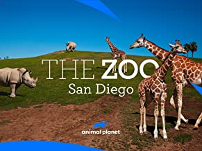 The Zoo: San Diego Season 1