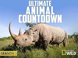 Ultimate Animal Countdown Season 1