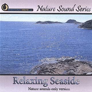 Best seaside sound effects Reviews