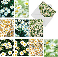 Assortment of Floral Note Cards with Envelopes, 10 'Oopsy Daisies' Blank Greeting Cards 4 x 5.12 inch for Baby, Wedding, Thank You, Easter, Stationery Set - NobleWorks M6031