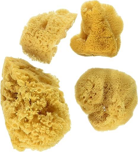 3 Silk//1 Jumbo Artist Sponges 4//pkg