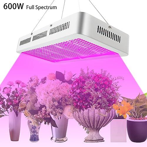 finest selection e7db9 f3ed3 600 Watt LED Grow Light: Amazon.co.uk