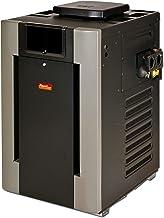 Raypak 266,000 BTU Digital Electronic Ignition Natural Gas Pool Heater
