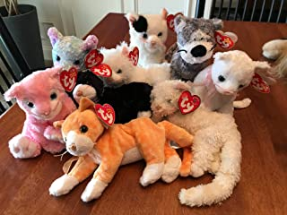 Best carnation beanie baby Reviews
