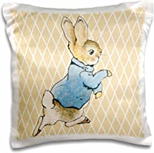 3dRose Peter Rabbit Vintage Art- Animals - Pillow Case, 16 by 16-inch (pc_79399_1)