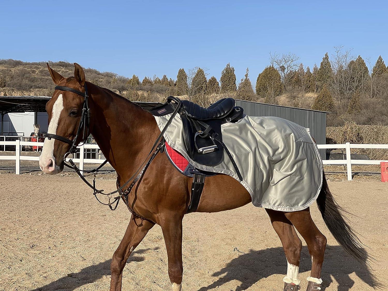 Tgw Riding Horse Nylon Sheet Elegant Exercise X-Lar Quarter Easy-to-use