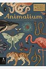 Animalium (Welcome To The Museum) Kindle Edition