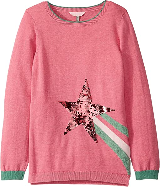 Blossom Pink Shooting Star