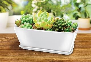 12 litre plant pots