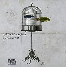 ZOE Musica De Fondo Unplugged CD + DVD