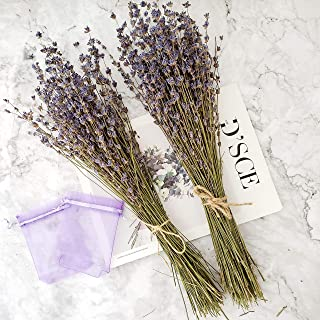 Dried Lavender Bundles, Total 200 Stems Fresh Real Natural Lavender Flowers Ultra Blue for DIY Home Party Wedding Decor