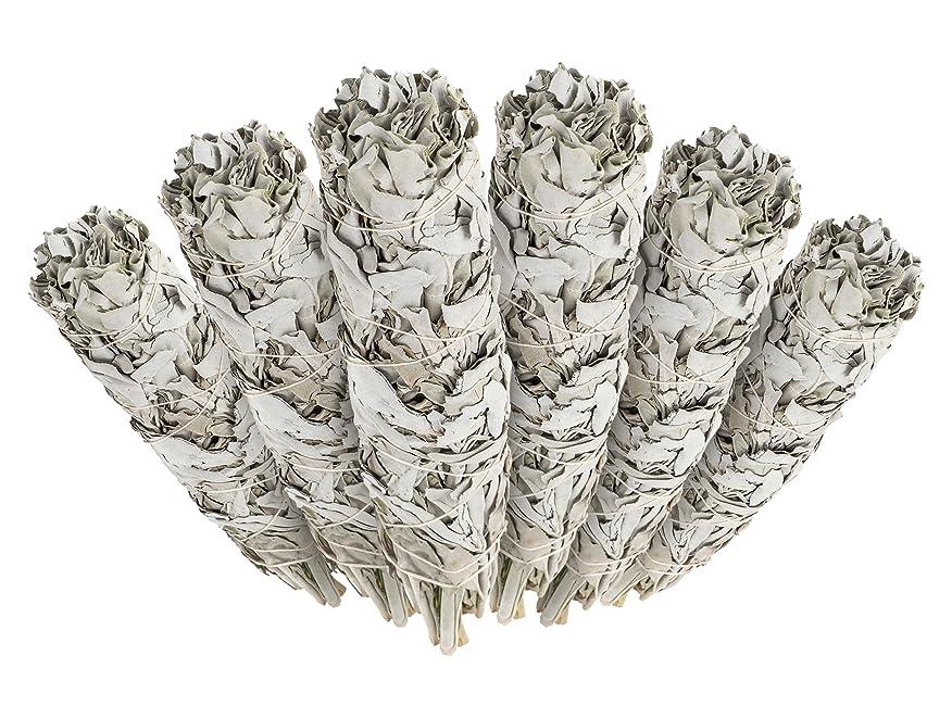 のり情熱遺棄された6 Pack - Premium California White Sage Smudge Sticks, Each Stick Approximately 10cm Long - Incense Garden Brand. Made in USA.