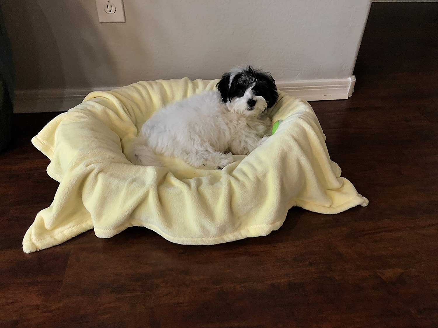 Puppies 30 x 40 Great for Pet Beds and Carriers Higher Comfort Super Soft Premium Pet Blankets for Small Dogs Cats /& Kittens
