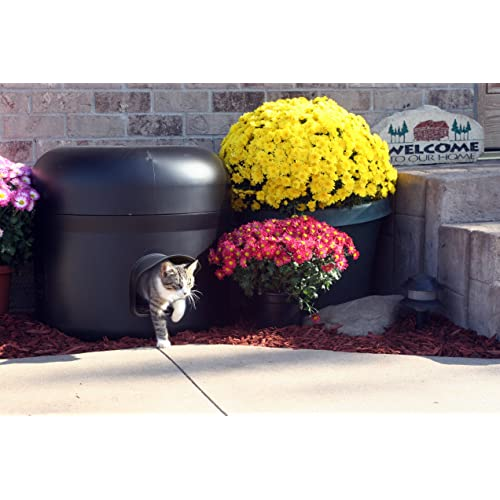 Feral Cat House: Amazon.com on feral cat shelter house, feral cat house plans, feral cat shelters for outside, feral cats in winter care, dog house outside, diy insulated cat house outside,