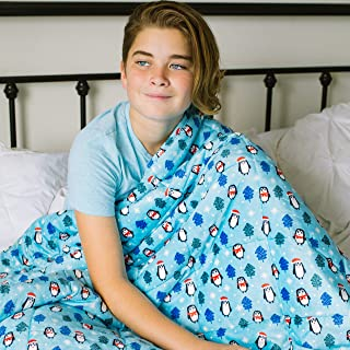 HomeSmart Products Weighted Calming Blanket for Kids & Toddlers - 5lb 40x60 Penguin - Ultra Soft Minky Material - Machine Washable - Can be Used as a Lap Pad for Kids