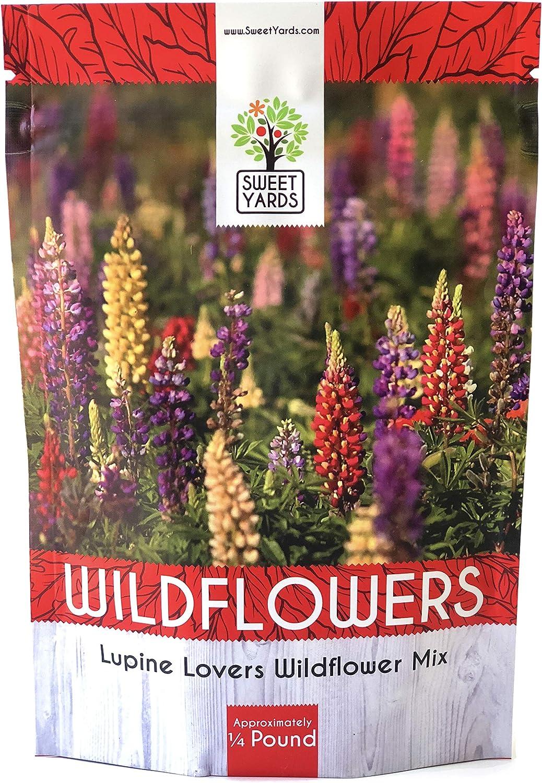 14 OZ 150 YELLOW LUPINE seeds; Lupinus Densiflorus; wildflower patch