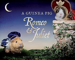 A Guinea Pig Romeo & Juliet (Guinea Pig Classics)