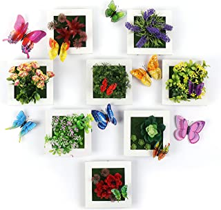 Assorted Artificial Flowers - Wall Mounted Plants and Succulents in Wood Frames | Decorative Hanging Fake Foliage Art Collage Set | Designer Arrangements Wall DÃcor | Bonus Butterflies (8PCS)