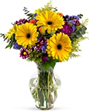 Best where to get fresh flowers Reviews