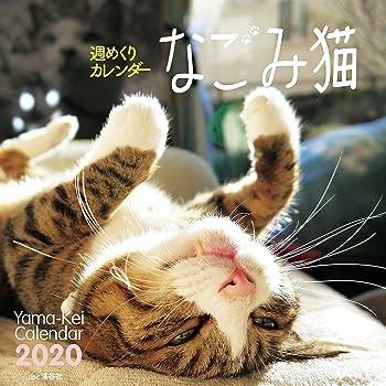 カレンダー2020 週めくりカレンダー なごみ猫 <卓上> (ヤマケイカレンダー2020)