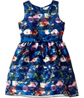 Us Angels - Sleeveless Organza Striped Floral Dress with Full Skirt (Big Kids)