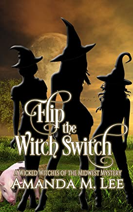 Flip the Witch Switch (Wicked Witches of the Midwest Book 14) (English Edition)