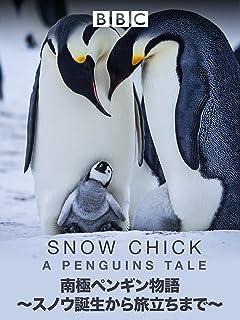 南極ペンギン物語 ~スノウ誕生から旅立ちまで~ (吹替版)