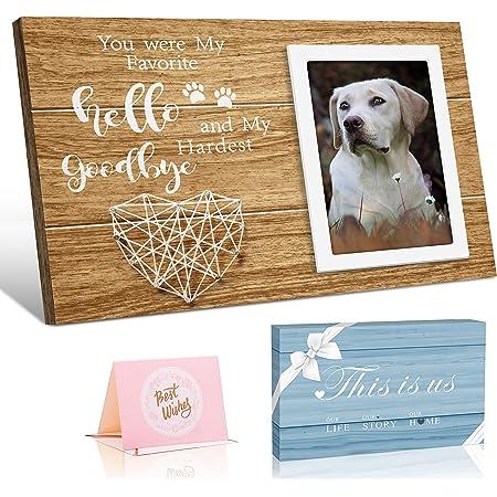Pet Loss Gift rainbow bridge Sympathy Gift Dog Memorial Pet Memorial pet Gift Pet Sympathy Gift Pet Sympathy Gift Box Paw Print