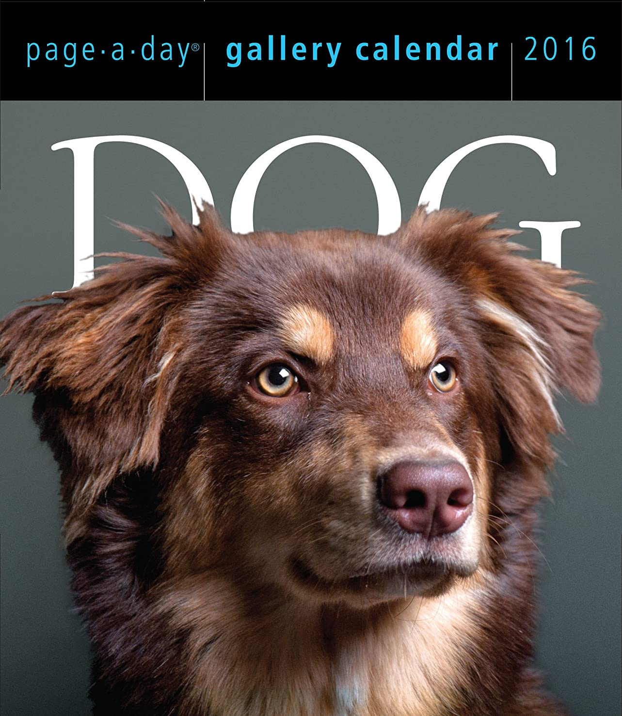 前追放するそれにもかかわらずDog 2016 Gallery Calendar (2016 Calendar)