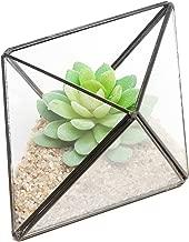 MyGift Modern Diamond Design Clear Glass Terrarium with Black Metal Rim