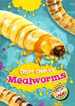 Mealworms (Creepy Crawlies)