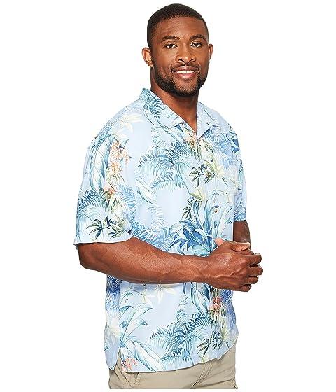 Big Tropical de Big amp; Tommy Tall amp; fresco Falls aire amp; Bahama Campamento camisa Tall amp; wfzOxWUXOq