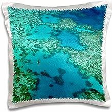 3dRose Blacktip Shark, Barrier Reef, Australia Pillow Case, 16 x 16