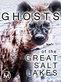Ghosts of the Great Salt Lakes
