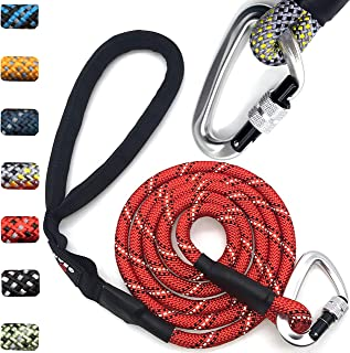 Enthusiast Gear Climbing Rope Dog Leash with Locking Carabiner for Large and Medium Breeds | Sturdy