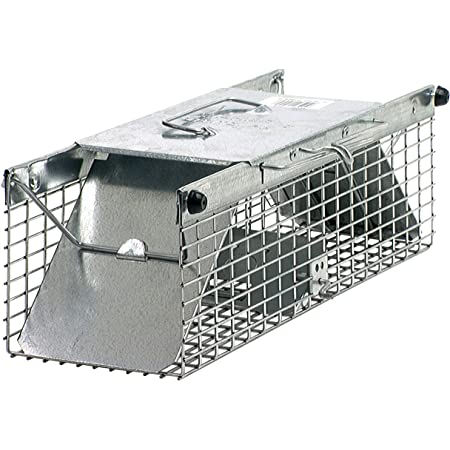 Havahart 1025 Live Animal 2-Door Squirrel, Chipmunk, Rat, and Small Rodent Cage Trap