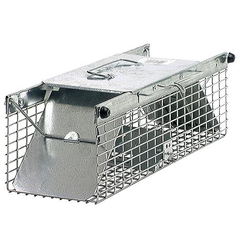 Squirrel Trap Amazon Ca
