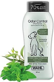 Best dog odor control shampoo Reviews