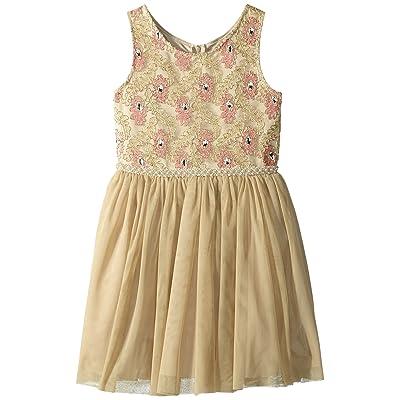 Nanette Lepore Kids Novelty Lurex Mesh Dress (Little Kids/Big Kids) (Gold) Girl