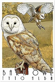 Noir Gallery Barn Owl Animal Illustration 5