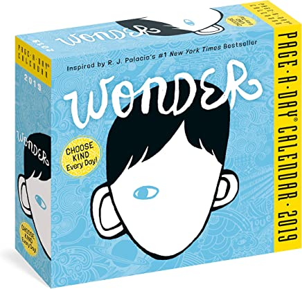 Wonder Page-A-Day Calendar 2019
