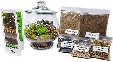 Executive-Lifestyle 1 Gallon Closed Terrarium Starter Kit (Includes 1 Gallon Jar w/Lid, Pebbles, Moss, Activated Carbon, Plant Soil/Sand)