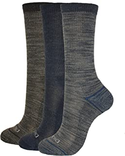 Women's 3-Pack Soft Light Wool Keeps Feet Dry All Year Crew Socks