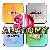 ANATOMY 3D Software - Human Anat...