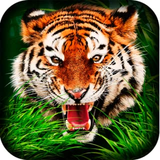 Indian Tiger Simulator 3D