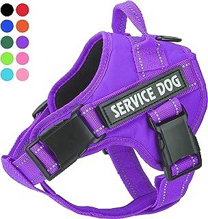 Best purple dog vest Reviews