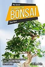 Best bonsai step by step Reviews