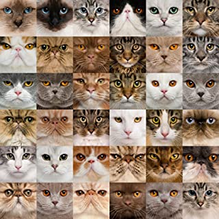 Wooden Mosaic Jigsaw Puzzle – Cats – 104 Unique Pieces Challenge Any Puzzle Lover Ages 8 to Adult – Made in The USA by Zen Art & Design