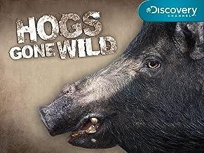 Hogs Gone Wild Temporada 1